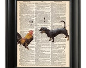 DACHSHUND Dog Meets Rooster Print ORIGINAL Art Illustration on Upcycled Antique English Dictionary Book Page 8x10