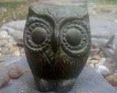 Solid Bronze Owl