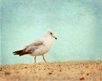 Seagull Beach Art Print - Aqua Beach House Wall Art Home Decor Ocean Bird Vintage Coastal Photograph