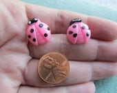 Cute Hand Painted 16mm x 14mm Bubblegum Pink Resin Ladybug Post Earrings with Black Polka Dots and White Eyes