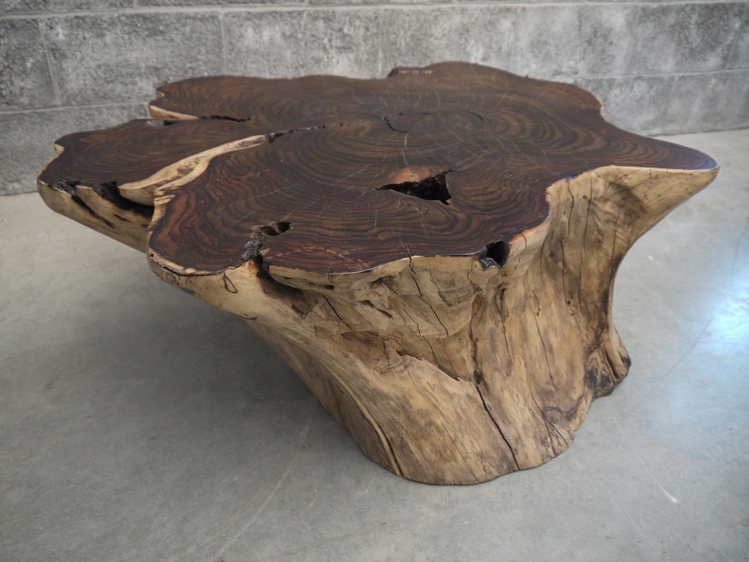 Sono Wood Root Coffee Table Live Edge