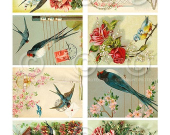 Pretty Birdies ATC backgrounds Collage Sheet Printable Download Digital File Instantly