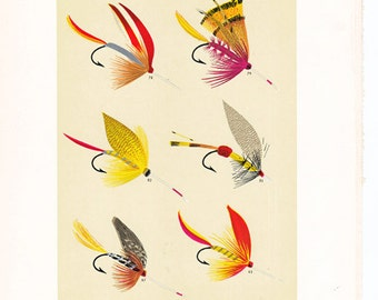 C. F. Orvis Fly Fishing print with flies for anglers 1955 print from 1892 chromolithograph