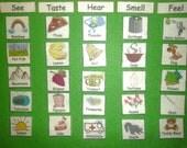 Felt/Flannel Board Set: 5 Senses/Five Senses Match -  ALSO choose LAMINATED Card Stock/Flashcards/Sight Words - Kids - Science - Homeschool