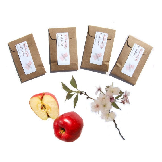 Spring Rustic Wedding Favors Apple Blossom Scented Sachets Gift for Women Sweet 16 Personalized Seed Packets Kraft Other Color Party Event