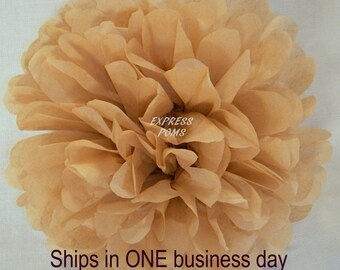 Tan Tissue Paper Pom Pom - 1 Medium Pom - 1 Piece - Ships within ONE Business Day
