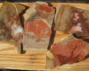 Cabbing - Lapidary rough / Teepee Canyon Agate / 4 specimens - Free shipping usa