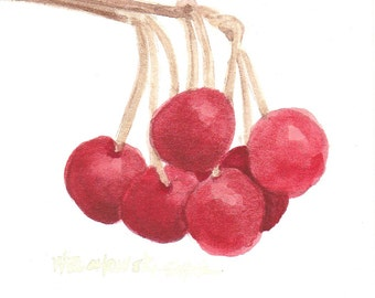 Red Cherry Bunch Original Watercolor Painting by Wanda's Watercolors