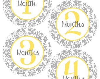 MONTHLY Milestone STICKERS - Damask Baby Month Milestone Stickers - Gender Neutral Month Stickers - Rylie