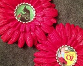 Wizard of Oz flower clip u pick one