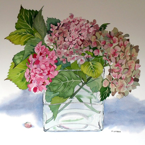 Botanical Flower Watercolour Hydrangea Pink Watercolor