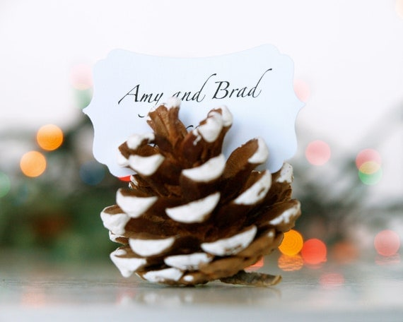Christmas Wedding Escort Cards, Pine Cone, Woodland Wedding, 10 Name Place Table Setting Plan Rustic Country Theme Winter Snow White