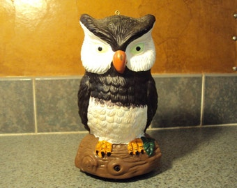 This is a hooting hoot owl