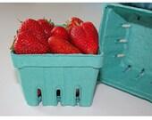Turquoise Strawberry Basket