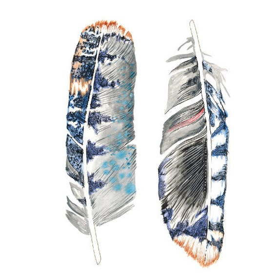 PRINT of Feather painting - feather art - blue jay - in grey / indigo / cobalt blue / sienna brown / black / white