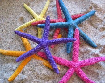 Beach Decor - Colored Starfish (3) - Starfish -Seashell Supply -Coastal Home Decor