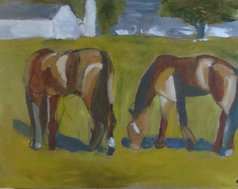 Maine Horse Farm