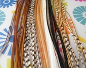 Hair Feathers Extensions, Fall Mix Colors  Extremely Low Pricing Shop Wide on Hair Feather Extensions