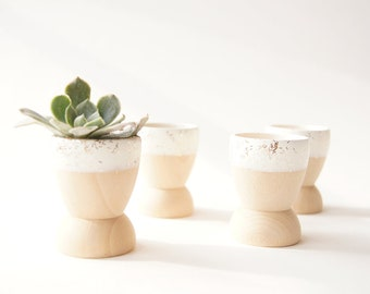 Mini Planters set of 4, Snow White Sparkle, wedding favors, modern home decor, hostess gift