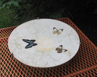 Atomic Fiberglass Decorative Fruit Bowl Butterfly Brass Legs