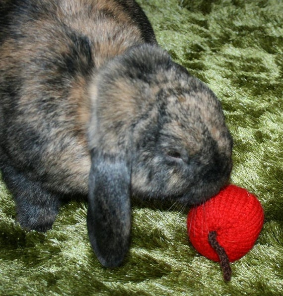 hand knitted jingle red apple bunny rabbit roll, toss and carry toy