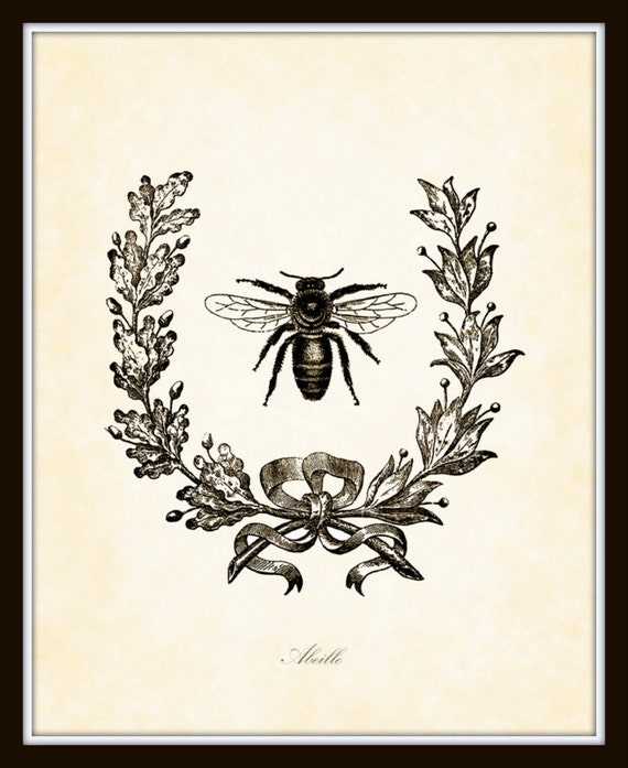 clipart french bee - photo #16
