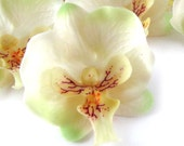 """10x White Green Butterfly Orchids Heads 2"""" - Fabric - Phalaenopsis / Artificial Flower / Silk Flower - Wedding Decoration"""