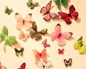 Organza Butterfly Wall Decoration, 20 Wedding Butterfly Decorations, Wall Decor, Nursery Decoration, Shower Decoration