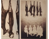 Sunday - original etching mezzotint print of socializing ladies and hanging deer by Carrie Lingscheit