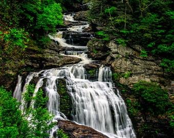 "North Carolina Waterfall Photograph Print, Fine Art Landscape Photography ""Tree Falls"" 8x10 Print (and larger)"