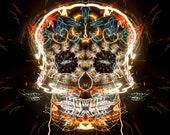Sugar Skull from Dia de Los Muertos (Day of the Dead)