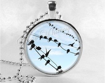 BIRDS On A WIRE, Bird Necklace, Bird Pendant, Bird Jewelry, Bird Charm Photo Art Glass Necklace Pendant Charm