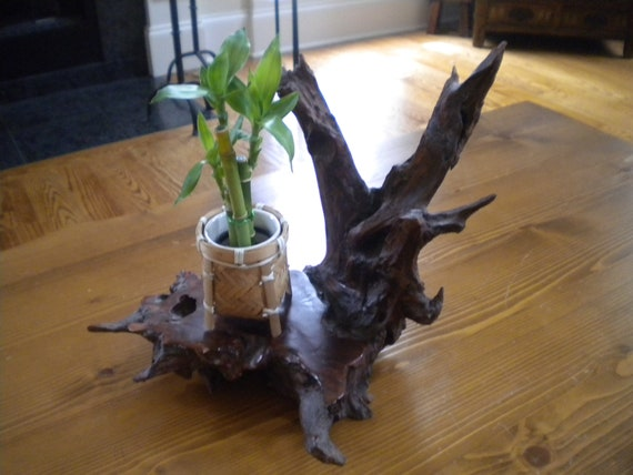 Vintage Cherry Tree Root plant stand, candle holder, bonsai stand
