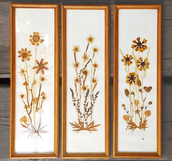 Pressed flowers collages in wooden frame vintage 50 years old set of three
