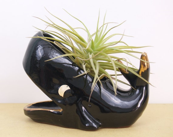 Small Vintage Whale Planter