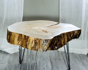 24 39 39 wide tree slice coffee table found wood by for Tree slice coffee table