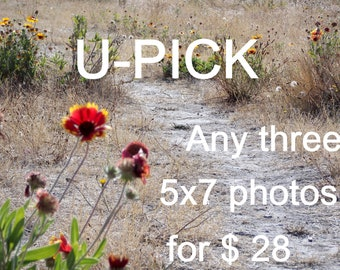 U-pick three 5x7 photographs