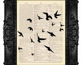 Flock of Birds, Dictionary Art Print Vintage Upcycled Antique Book Page no.202