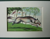 Vintage Wolf print - Little Red Riding Hood print - 1950s - wild - grey - woods - fairy tale - wolves