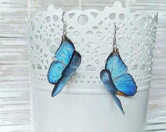 Resin Transparent Earrings Blue Fluttering Butterflies