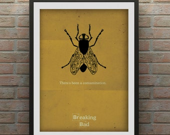 Breaking Bad Inspired (The Fly)