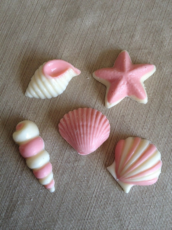 3d Seashell Candy Favors One Dozen Individually Wrapped