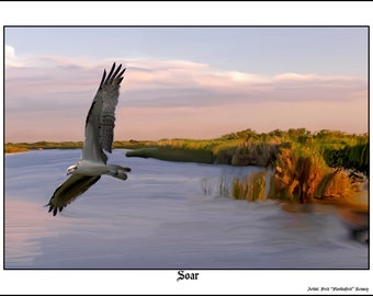 "Digital Painting 16x24 Print ""Soar"" Limited Edition of 5 signed and numbered Prints and free shipping"