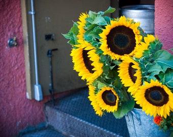 San Francisco Photography - Sun Flower - Castro - San Francisco, CA - 8x10 Fine Art Photograph - Wall Art