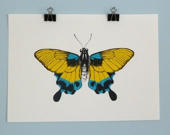 Screen Printing - Butterfly yellow & blue