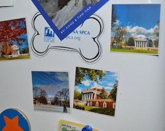 UVA Rotunda photo magnets (The Best of the University of Virginia Lawn for Your Fridge)