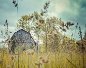 Rustic Barn, Nature Photography, blue farm rustic yellow clouds country summer autumn - 8x10 Photograph