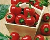 Heirloom Vegetable Seeds - Hot Pepper Seeds - Large Red Cherry Hot - HeirloomSeeds2U