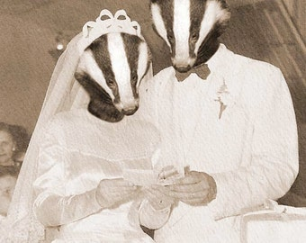 Badger Wedding 5x7 Anthropomorphic print