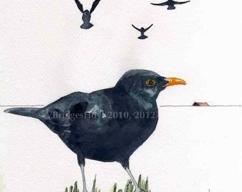 Four Calling Birds, Black Birds, 6x6 Mounted Print, Texas animal artist Vernita Hoyt